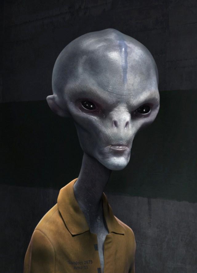Hasil gambar untuk the high grey alien
