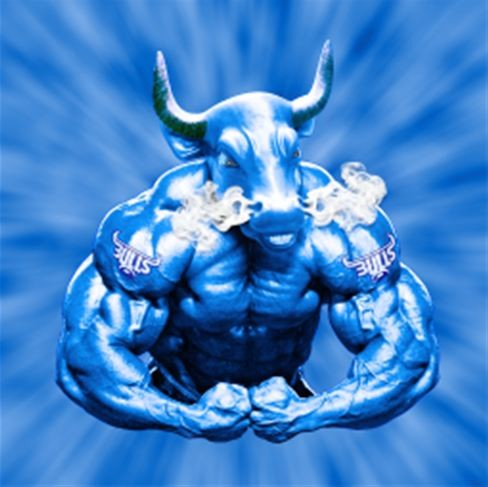 Blue Bulls Wallpapers Gendiswallpaper Com