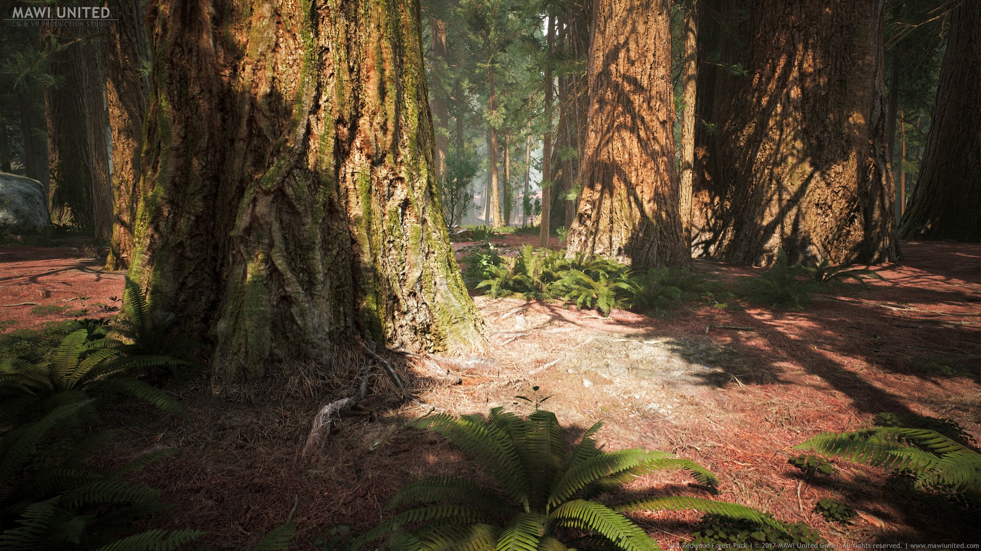 Forest Animated Wallpaper Willi Hammes Ue4 Redwood Forest