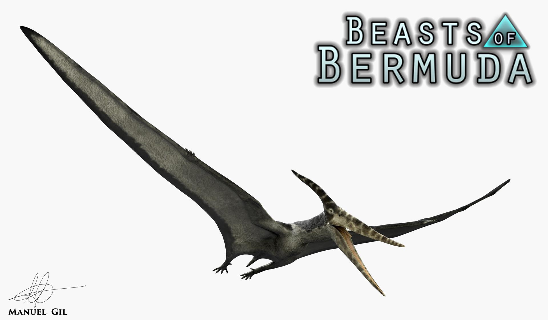 Manuel Gil Jaramillo Pteranodon Longiceps