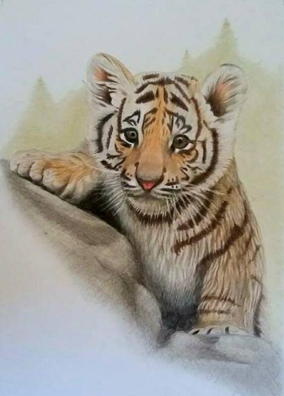 Artstation Cute Tiger Cub Attila Arva