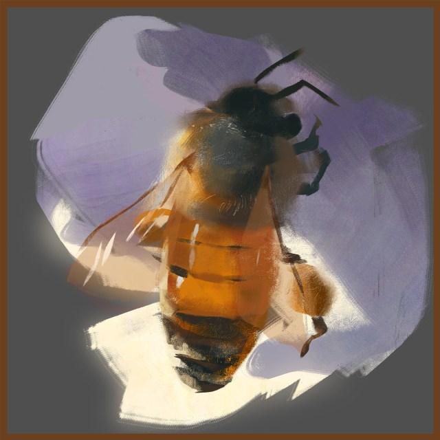 Melina zhu honeybee