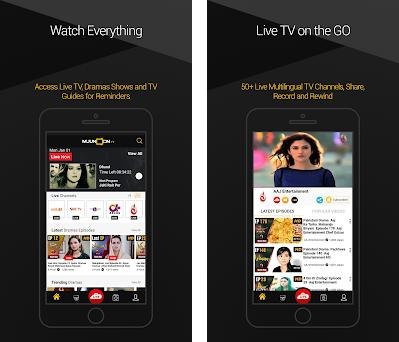 mjunoon tv - Pak Live TV Channels, News and Dramas 1 6 0 apk