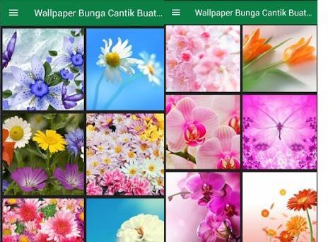 Unduh 70 Koleksi Wallpaper Foto Bunga Cantik Terbaik