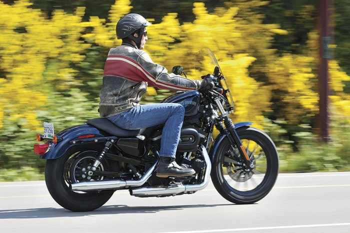 Harley-Davidson 883 Sportster Iron