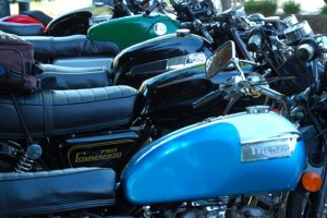 vintage motorcycle meet row of multi coloured triumphs