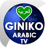 Giniko Arabic TV 1 1 apk download for Android • com tulix