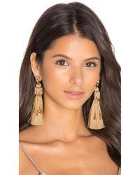 Elizabeth cole Earrings | Lyst