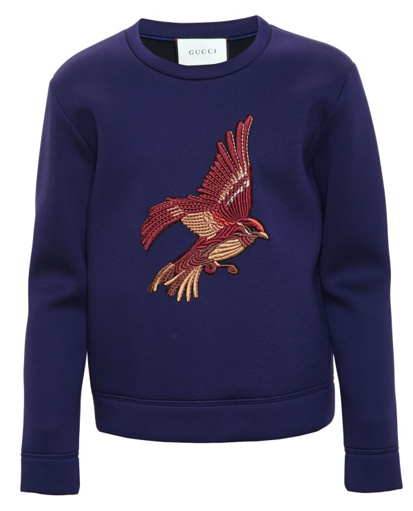 578a081a Embroidered Sweatshirts For Men - Year of Clean Water