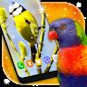 Bird HD Wallpapers apk 1.0 télécharger pour Android ...