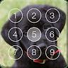 download Cute Black Labrador Puppies Screen Lock apk