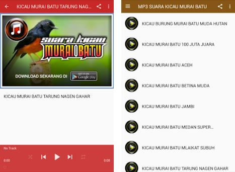Mp3 Suara Kicau Murai Batu 10 Apk Download For Android Com