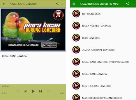 Kicau Burung Lovebird Mp3 On Windows Pc Download Free 1 0 Com Kicaulovebird Masteranlovebird Masterlovebird Lovebird Suaralovebird Lovebirdjuara