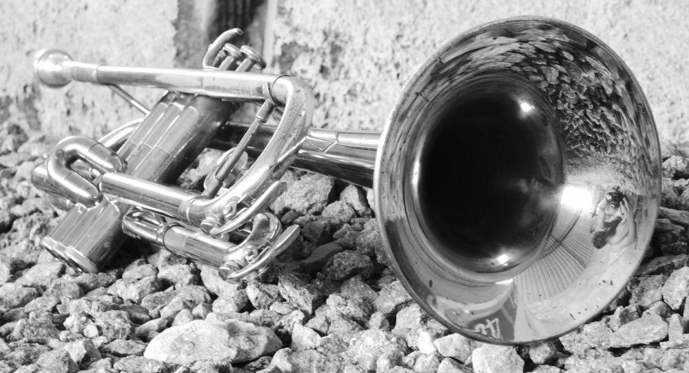 Détroussé d'un trombone à Lyon, un musicien se le voit proposé à l'achat le lendemain