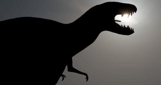 Des œufs de dinosaures découverts en Argentine par un berger 30 secondes de plus, et les dinosaures auraient (peut-être) survécu