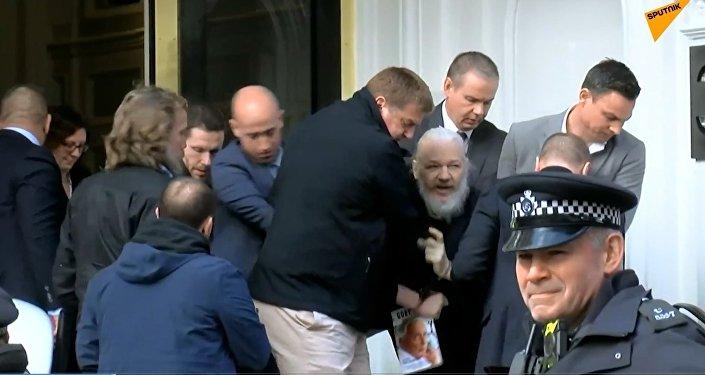 Assange arrêté dans l'ambassade d'Équateur à Londres