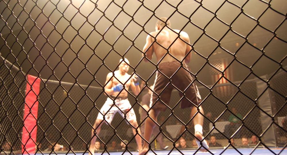 Un tournoi de MMA finit par un KO radical – vidéo