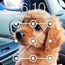 Cute Dogs Labrador HD AppLock Security apk icon