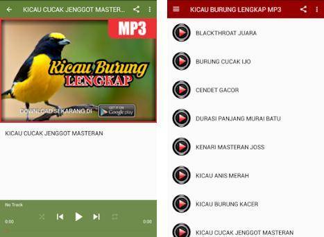 Kicau Burung Lengkap Mp3 Apk Baixar Para Android Ultima Versao 1 0 1