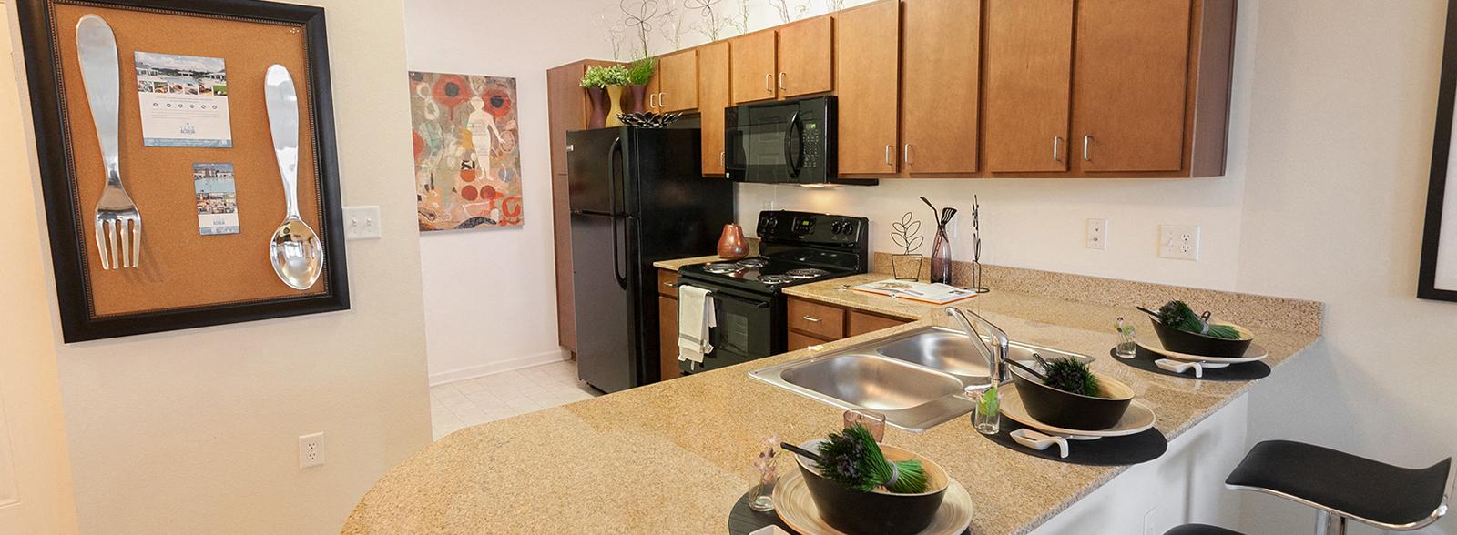 1200 Acqua  Luxury Apartments in Petersburg Virginia