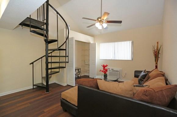 Tampa Loft Apartments Apartment