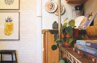 Broad Ripple Apartments - Pangea Groves | Pangea Real Estate