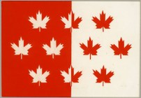 Despite the thousands of entries, many had common elements. The maple flag was the most popular, followed by the Union Jack, beavers, and the Fleurs-de-lys.