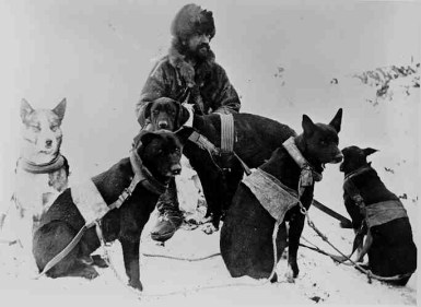 You could spend your days mining. Or you could get a job as a mail carrier and get to spend your days with dogs. Sled dogs were the best way to ensure speedy mail services.