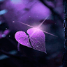 download Magical Purple Leaf LWP apk