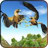 Eagle-Simulators 3D Bird Game Apk icon