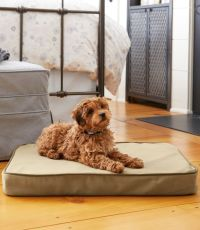 Therapeutic Dog Bed, Rectangular   Free Shipping at L.L.Bean