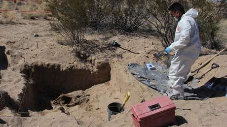 El macabro hallazgo de media tonelada de huesos humanos en un centro de exterminio en México