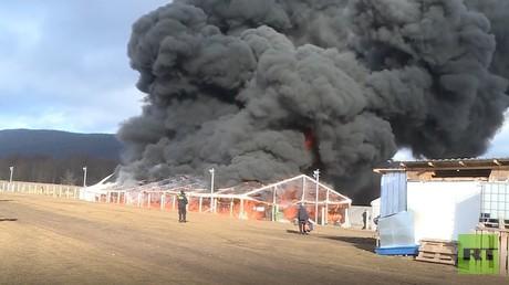 Bosnien und Herzegowina: Zeltlager für Flüchtlinge in Lipa niedergebrannt