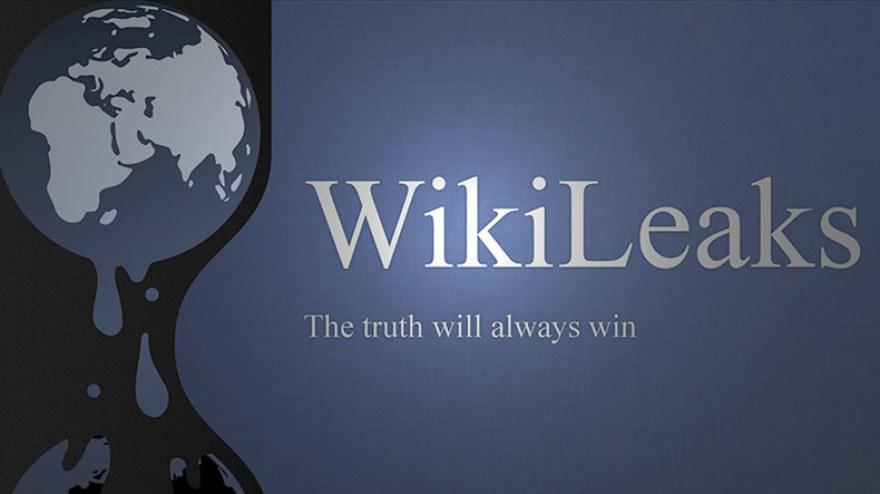 Resultado de imagen para wikileaks
