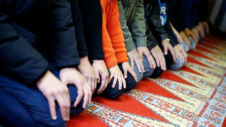 'Crackpot idea': German govt dismisses 'Islam law' proposed by Merkel's party