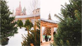 ARTIFICIAL snow and Christmas trees in pots – did you ever imagine Russian winter holidays looking like THIS?