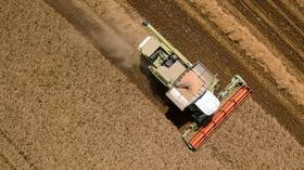 Do Russian grain export limits threaten global food security?