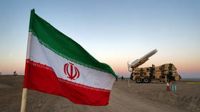 Senior Iranian commander killed in drone strike on his car near Iraqi-Syrian border – reports