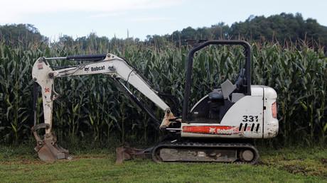 Un champ de maïs (image d'illustration).