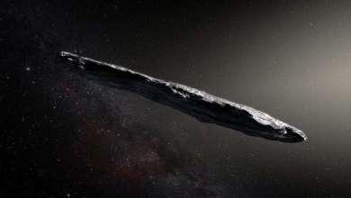 العلماء يحددون هوية أول زائر غير معروف لنظامنا الشمسي 5