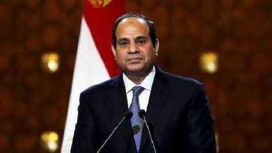 الحكومة المصرية تصدر كتابا يرصد إنجازات السيسي أثناء أربعة سنوات 13