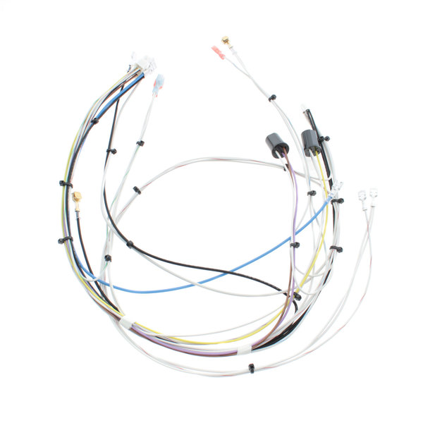 Bunn 29072.0000 Wiring Harness, Main 120v