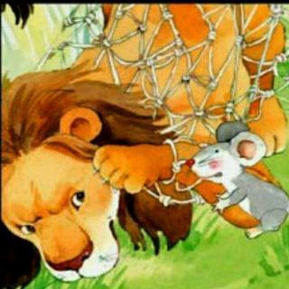 大獅子和小老鼠圖片 _排行榜大全