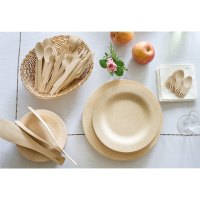 "Bamboo Plates | 9"" Eco Friendly Disposable Bamboo Plate"