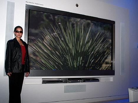 150-inch Panasonic Plasma TV at CES 08