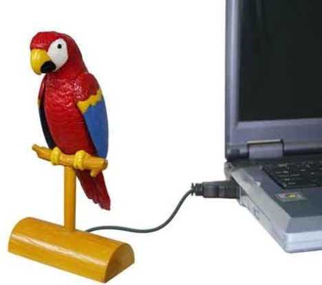 USB Parrot A Hoot
