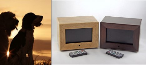 Digital Picture Frame holds Pet Ashes