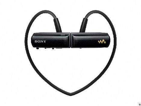 Sony NWZ-W252 W-Series Walkman MP3 player