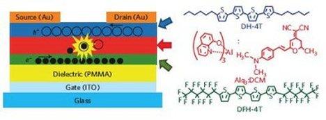 Are Organic Light Emitting Transistors More Efficient Than OLEDs?