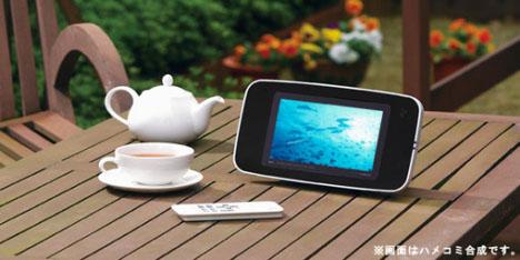 Twinbird Zabady VD-J715B Waterproof Portable DVD Player